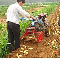泺清4U系列土豆收获机