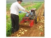 4U系列土豆收获机