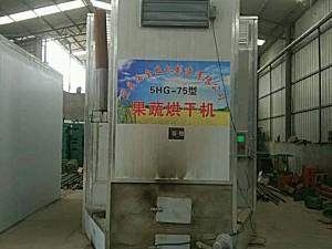 云南汝全5HG-75果蔬烘干机