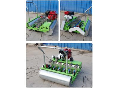 云杉机械602自走式蔬菜播种精播机