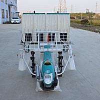 鑫昊田2ZS-4H水稻插秧机