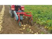 4U1-A土豆收獲機