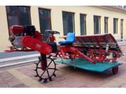 2Z-8238水稻插秧机