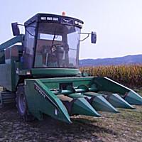 泰州常发4YZB-4C玉米收获机