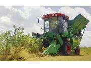 4GM-200A灌木联合收获机
