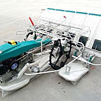 京禾2ZS-6A水稻插秧机