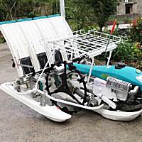 吾誠2ZS-4A水稻插秧機