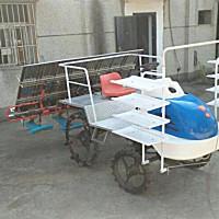 黄鹤2ZG-XRD8B插秧机