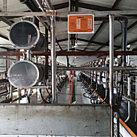 麦喀斯9JYD-32、9JYD-28挤奶机