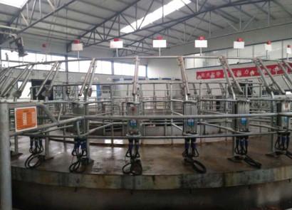 上海麥喀斯9JZD-40擠奶機