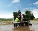 中联2ZPY-13A水稻有序抛秧机