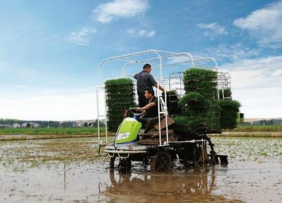 中聯2ZPY-13A水稻有序拋秧機