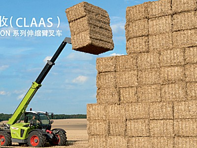 CLAAS(科乐收)SCORPION 741伸缩臂叉车