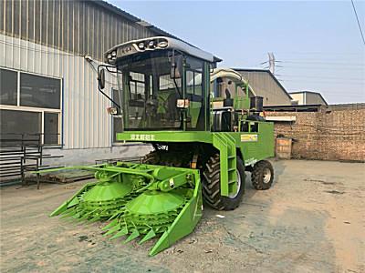 河北利裕丰9QZ-2600自走式青饲料收获机