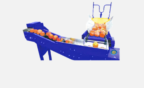 斯維墾SOSS100側翻式水果分選機
