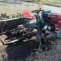 盛和2Z-8238水稻插秧机