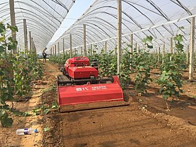 菱代遥控履带果园管理旋耕机