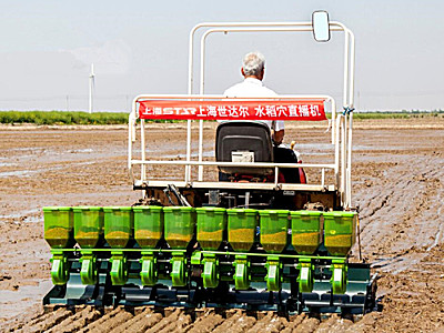 上海世达尔2BDXS-10CP(20)水稻穴直播机