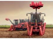 凯斯A8010(8000)甘蔗收获机