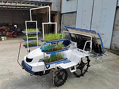 湖北捷农2ZG-6Q 型高速插秧机