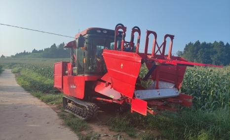 谷耘豐4YZT-2自走式鮮食玉米/甜玉米收獲機