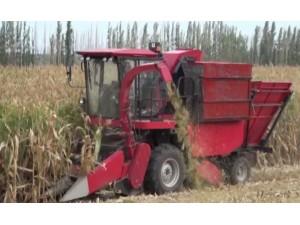 牧神4YZ-3玉米收获机作业视频