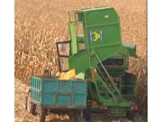 天拖4YZ-4X自走式玉米联合收获机田间作业视频