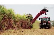凯斯8000型甘蔗收割机作业视频