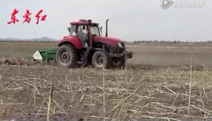 東方紅CF1404-1504拖拉機作業視頻