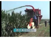 寧聯4YZQB-3HYS自動式穗莖兼收玉米收獲機(剝皮、回收)
