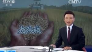 央视直播宁联谷子收获机收获现场