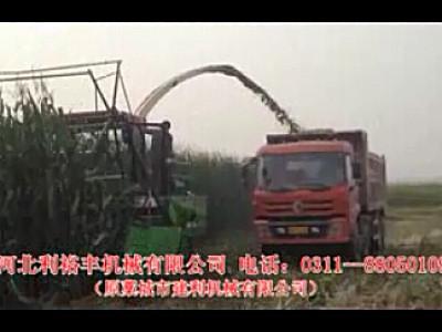 青饲料收获机-河北利裕丰机械有限公司