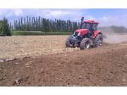 鄭州龍豐B450柵條犁配套東方紅1804高茬玉米地耕作視頻