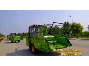 美迪9QZ-2900A青饲料收获机作业视频