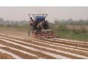 潍坊大众两垄四行花生播种机作业视频