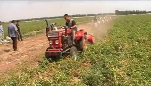潍坊大众机械杀秧机作业视频