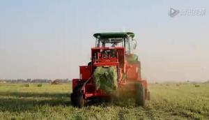 華德打捆機牧草打捆機作業視頻