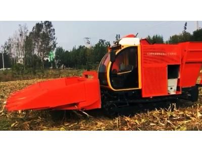 天津萨克赛斯履带式玉米收获机产品展示