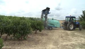波尔图WinAir 吊杆式葡萄园喷药机作业视频