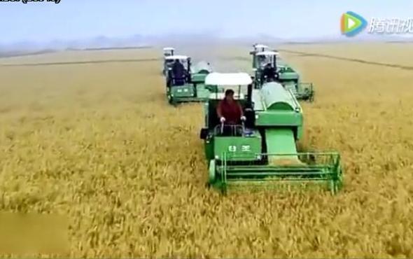 谷王PQ45水稻機作業視頻