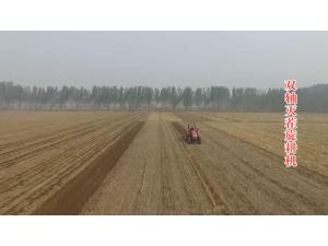 河北圣和1GQNM-250型双轴灭茬旋耕机产品介绍