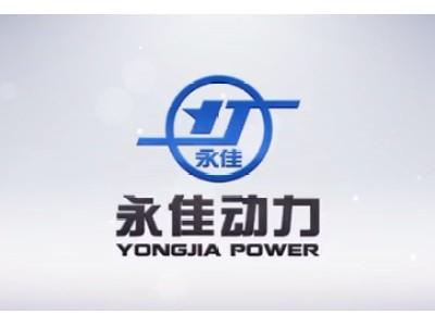 山东永佳动力股份有限公司企业宣传片(二)