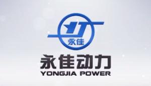 山東永佳動力股份有限公司企業宣傳片(二)