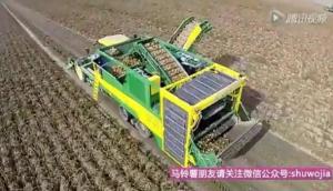 PLOEGER AR-4BX一体式马铃薯联合收获机