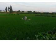 长沙拓航植保无人机-湖南大方生测基地现场作业视频