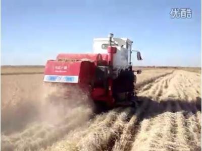 四平东风1548收水稻作业视频