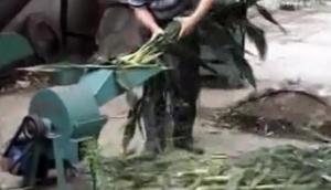 曲阜圣隆7.36型青草打漿機作業視頻