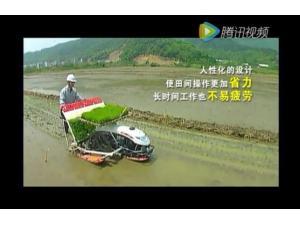 洋马AP4步行式插秧机作业视频