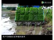 久保田SPV6CMD高速插秧机保养视频(下)