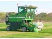 HALDRUP牧草收割机作业视频